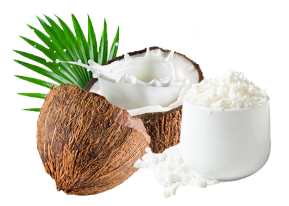 Coconut Milk Powder – Davidsun Coconut   Asia's Largest Organic MCT Oil  Products Exporters   India's Largest Producer of Virgin Coconut Oil